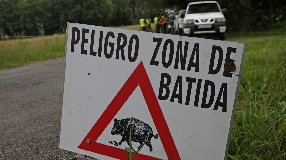 Batida de jabalí en Galicia