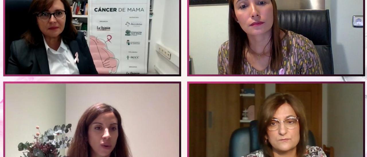 Un momento del webinar sobre el Cáncer de Mama