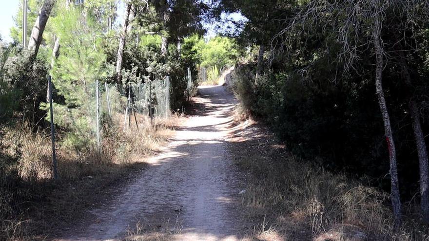 Un circuito verde paralelo al TRAM unirá la Cala de Benidorm con la Colonia Madrid