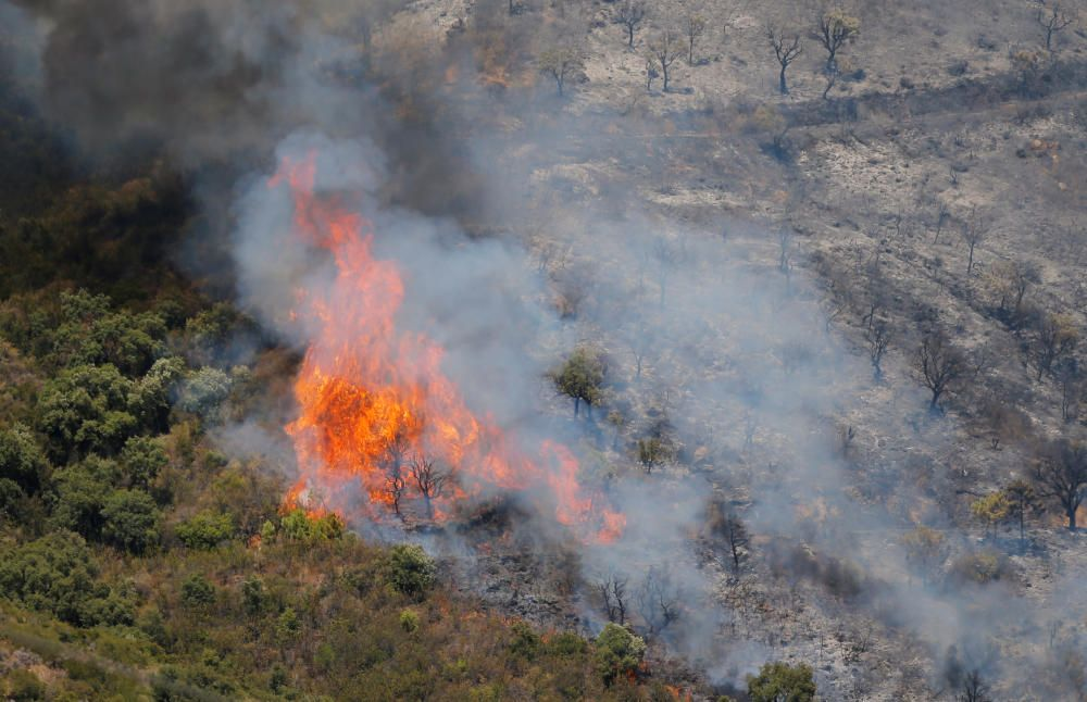 Flames and smoke from a forest fire are seen in ...