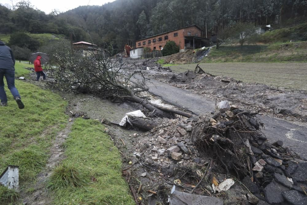 Un argayo derrumba una nave ganadera en Villazón (Salas)