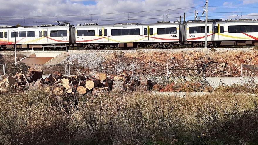 SFM tala los pinos que obstaculizan el corredor ferroviario de Marratxí