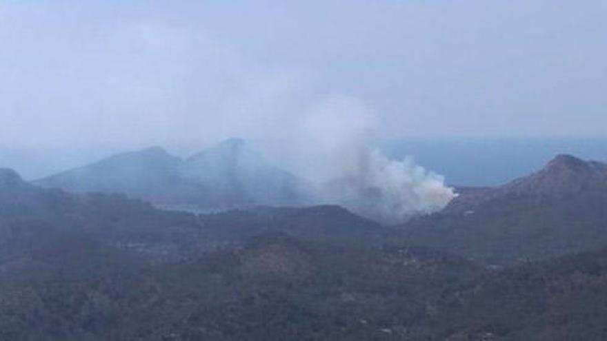 Weiterer Brand im Südwesten zerstört drei Hektar Kiefernwald