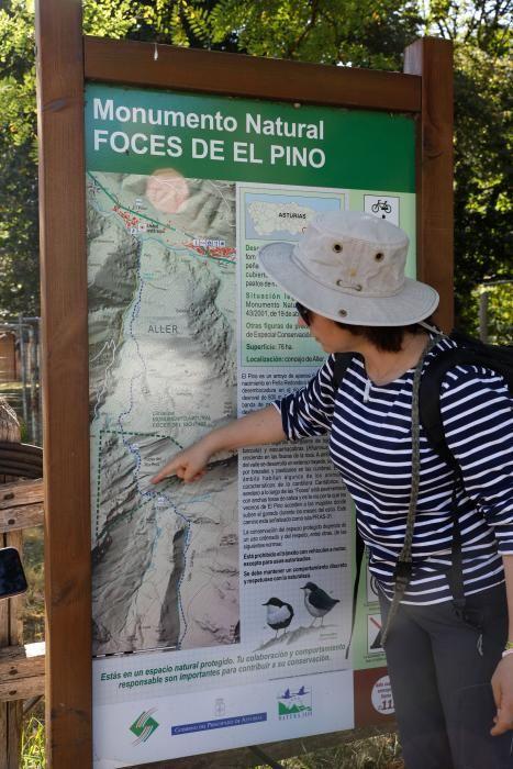 Rutas por Asturias: El Pino (Aller)