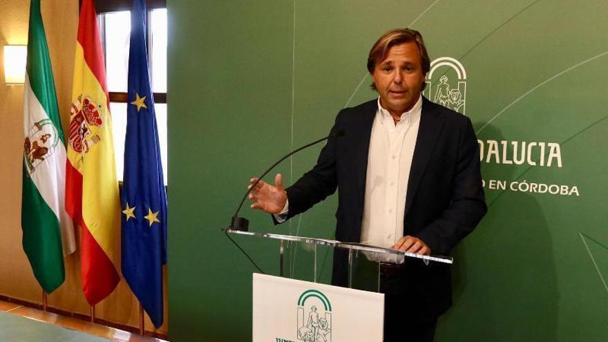 Endesa invertirá 370.000 euros en el casco histórico para evitar los cortes de luz