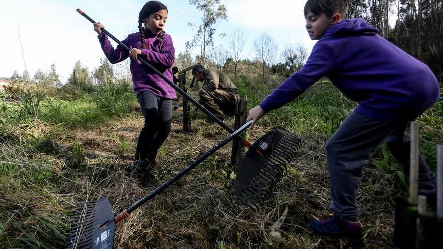 Un grupo de voluntarios adecua el área recreativa de Sollovio, en La Callezuela