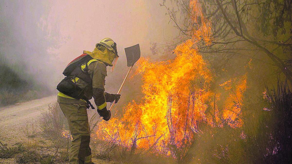 Un bombero apaga las llamas de un fuego en Rairiz de Veiga (Ourense) hace dos semanas.