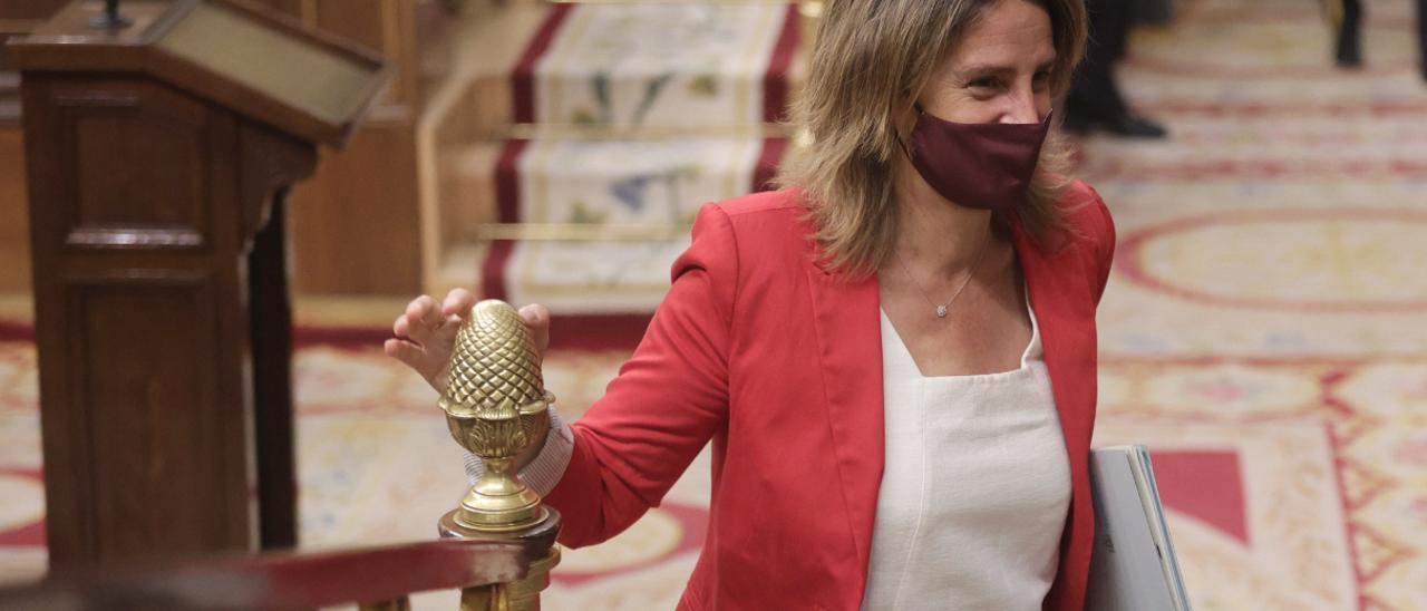 Teresa Ribera a su llegada al Congreso