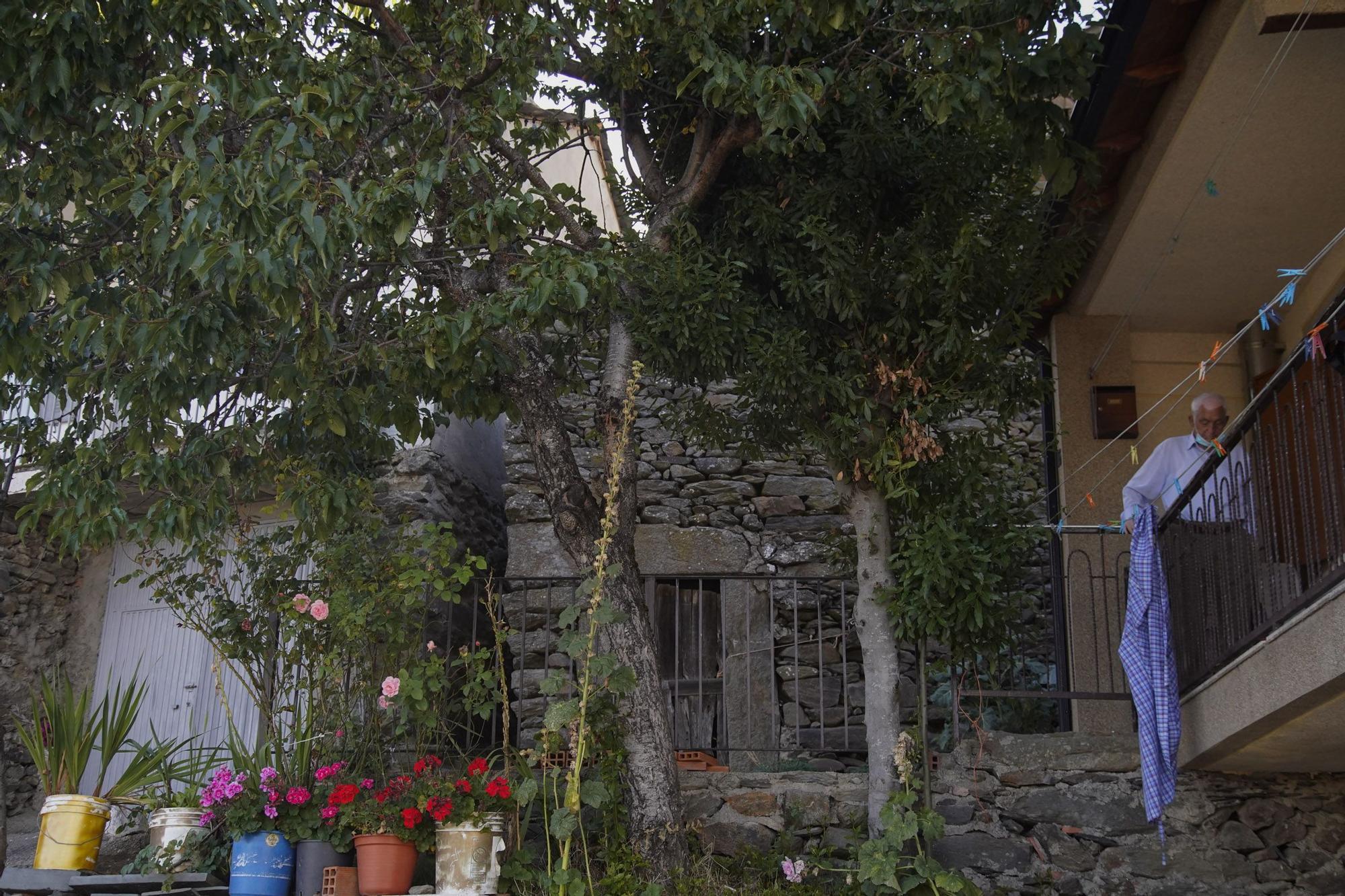 Zamora DesAparece | San Ciprián de Sanabria