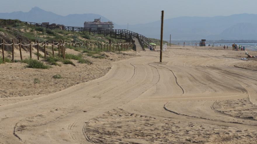 Máquinaria de limpieza arrasa el hábitat de chorlitejo en la playa protegida del Moncayo de Guardamar, según AHSA