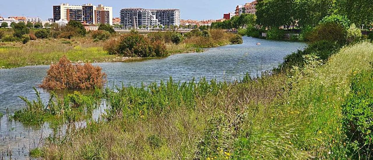 Río de vida al no poder embalsar más agua | J.A.T.