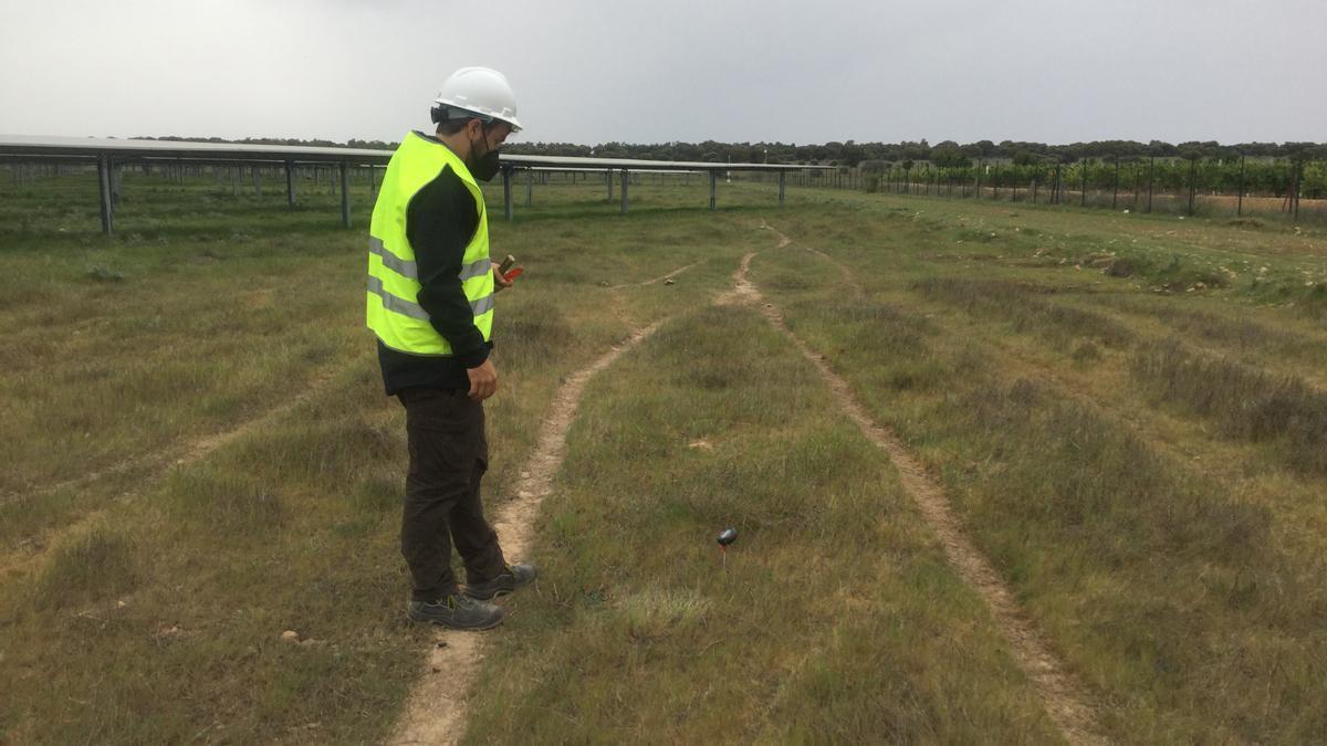 Coordinador ambiental. Un operario realiza labores de control.