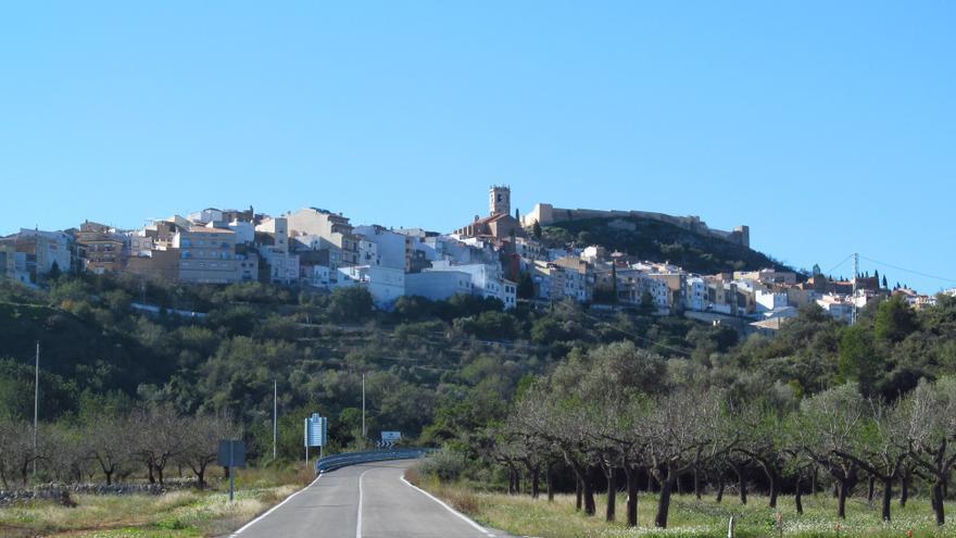 Cervera del Maestrat: Sierra, Rambla y Olivar