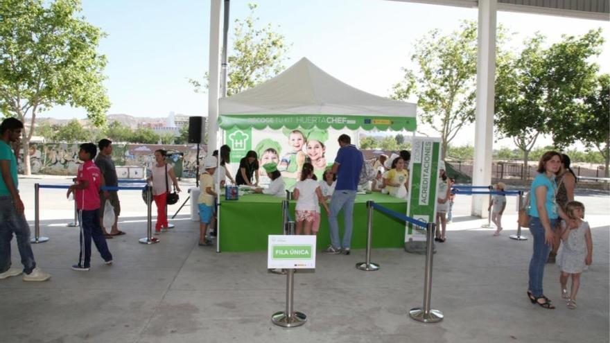 Concurso Infantil de concina con frutas y verduras de Fecoam en Lorca