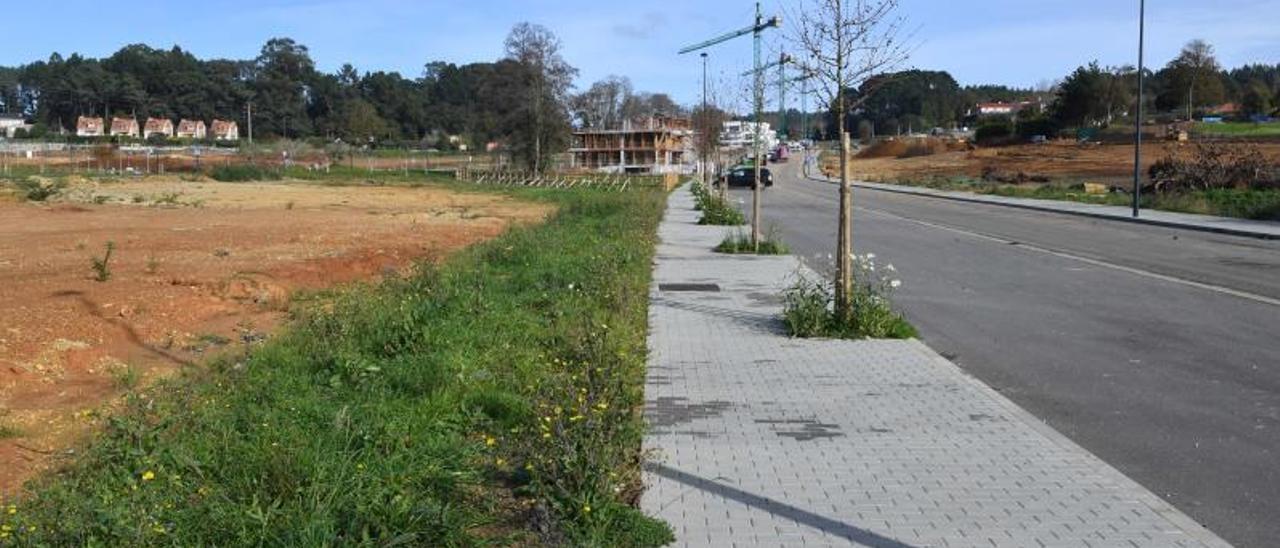 Terrenos preparados para edificar en Oleiros. |   // VÍCTOR ECHAVE