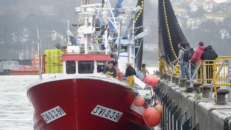 El cerco gallego que comparte cuotas inicia el año con poca pesca y precios bajos