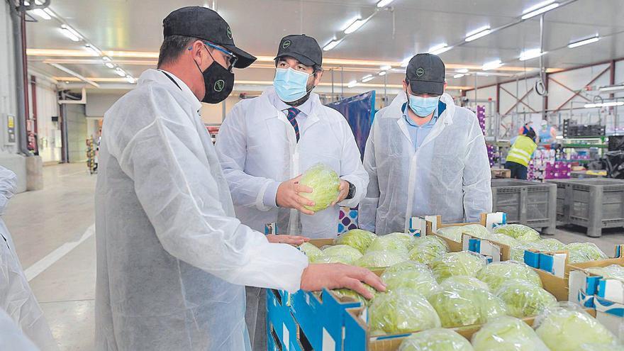 Más de 12.000 agricultores de la Región se beneficiarán de las nuevas ayudas de la PAC