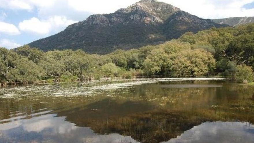 Ascensión al Picacho, Parque Natural de Los Alcornocales