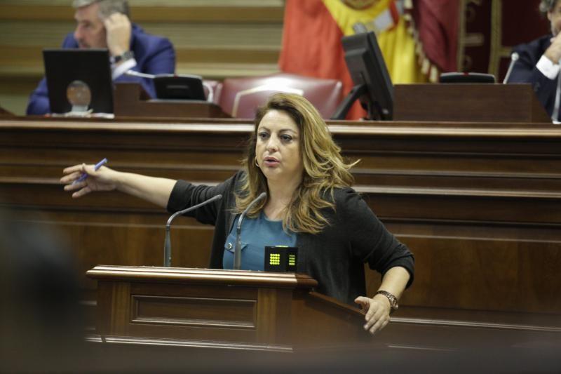 El pleno del Parlamento de Canarias continua con varias comparecencias, entre ellas varias de la consejera de Educación, María José Guerra, para abordar cuestiones como el absentismo y el abandono escolar temprano o el Plan Estratégico de Atención a la Diversidad en la Ley Canaria de Educación  | 12/02/2020 | Fotógrafo: Delia Padrón