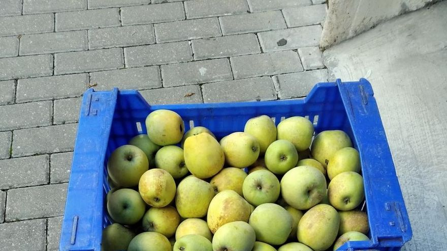 El Perelló, la fruta de la Vall d'Ebo que madura abrigada con mantas
