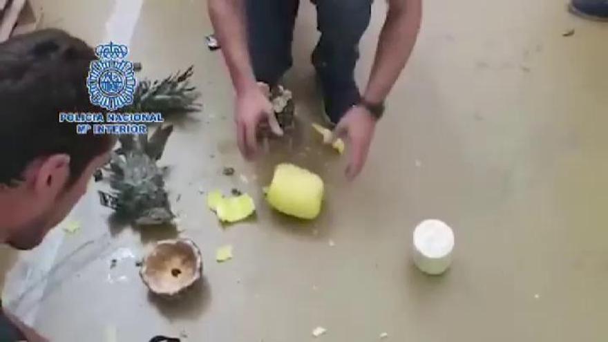Incautan 67 kilos de cocaína dentro de piñas procedentes de Costa Rica en Madrid