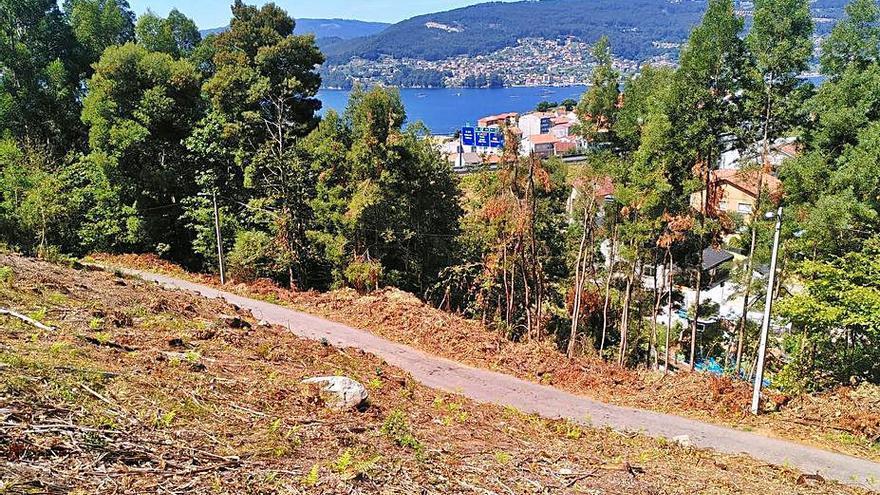 Los vecinos de Chapela exigen que se paren las talas junto al río Fondón