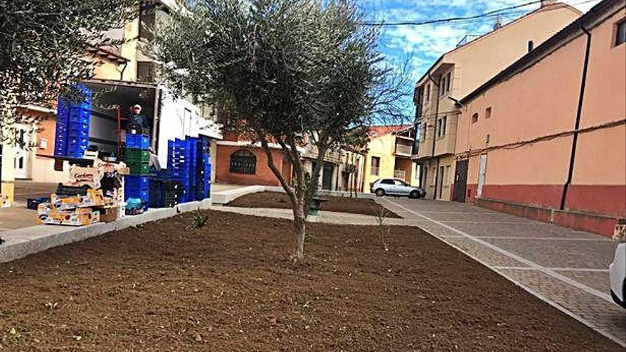 Adecuación del pequeño jardín que recibirá el nombre de Pilar Utrilla.