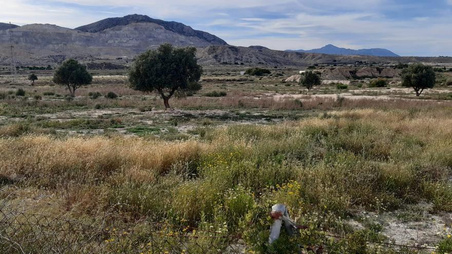 Ecologistas y vecinos alegan contra la declaración de interés comunitario de una nueva planta de residuos de la construcción y demolición en Fontcalent