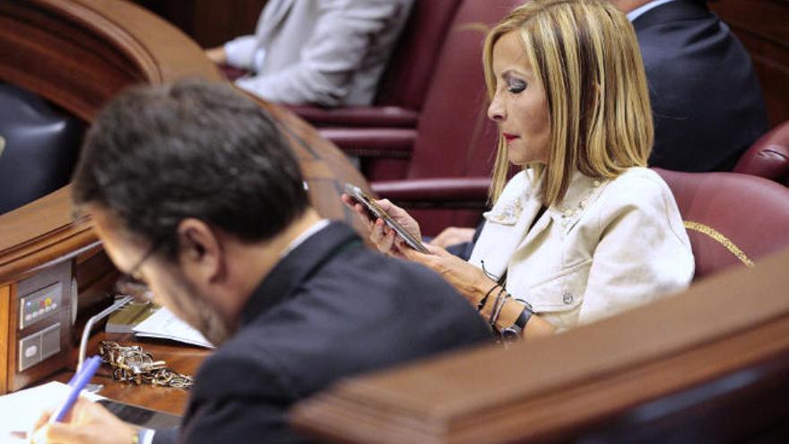 Génova suspende de militancia y funciones a los consejeros palmeros