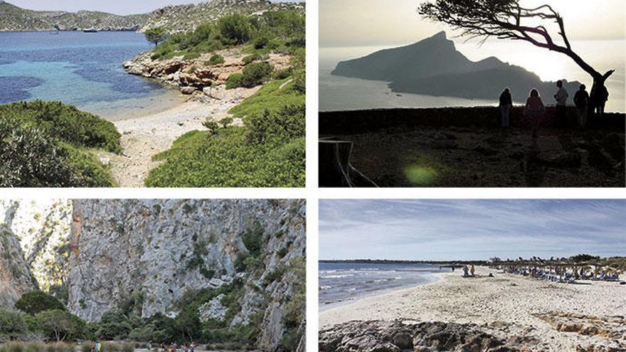 Hier kommen Sie der Natur auf Mallorca ganz nah