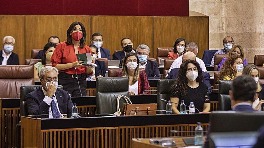 El Parlamento reclama medidas urgentes para abaratar la luz