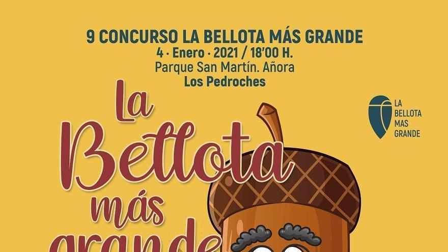 El CIET de Los Pedroches convoca el concurso de la 'Bellota más grande' de la dehesa