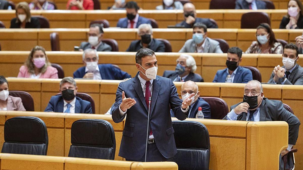 Pedro Sánchez ahir al Senat.  | EUROPA PRESS