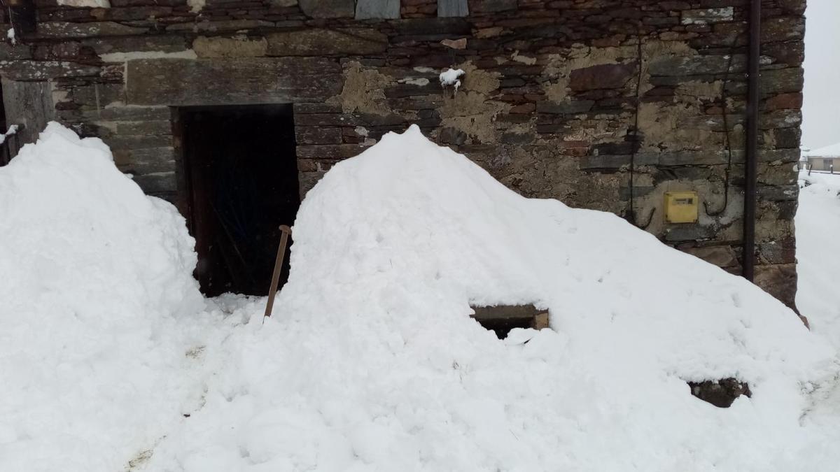 La nieve cubre la entrada a una cuadra en Louxedo (San Martín de Oscos)