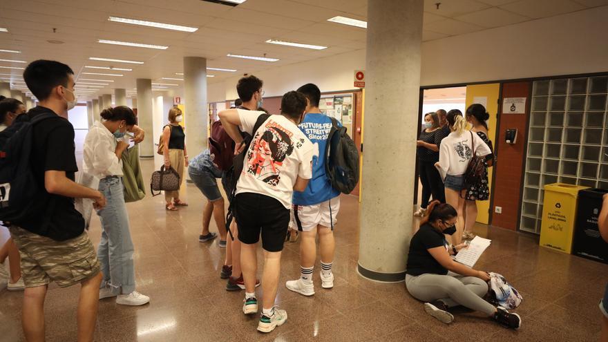 La  UMH cubre el 100% de las plazas ofertadas y más de 15.000 estudiantes se quedan en lista de espera