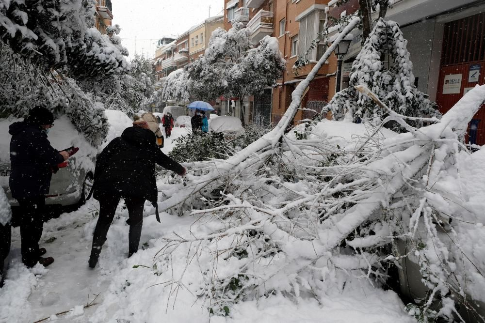 La borrasca Filomena colapsa Madrid