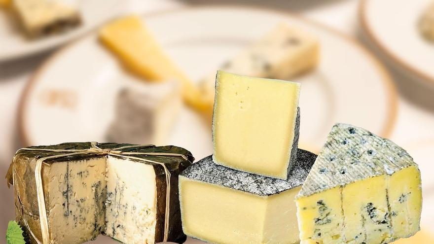¿Quién se comerá el queso?