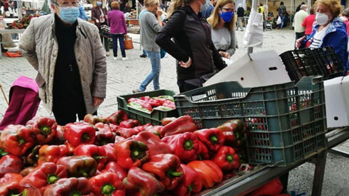 Una compradora observa los pimientos en uno de los puestos de la feria en la Plaza Mayor. | M. F.
