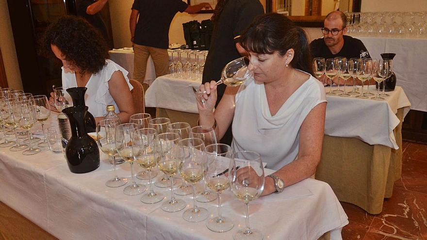 Medio centenar de vinos compiten por las tres medallas de la Festa do Albariño