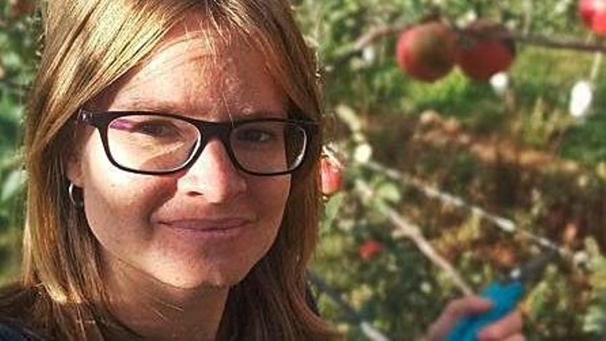 Els productors de poma del Pirineu auguren una collita de gran qualitat