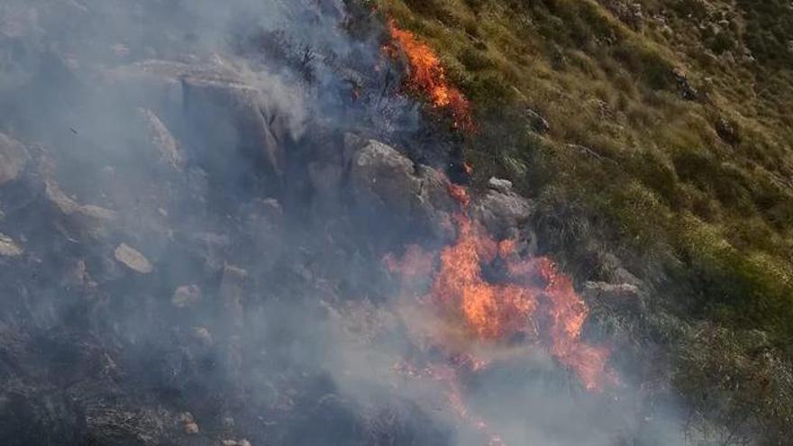Waldbrand auf der Finca Ariant bei Pollença ausgebrochen