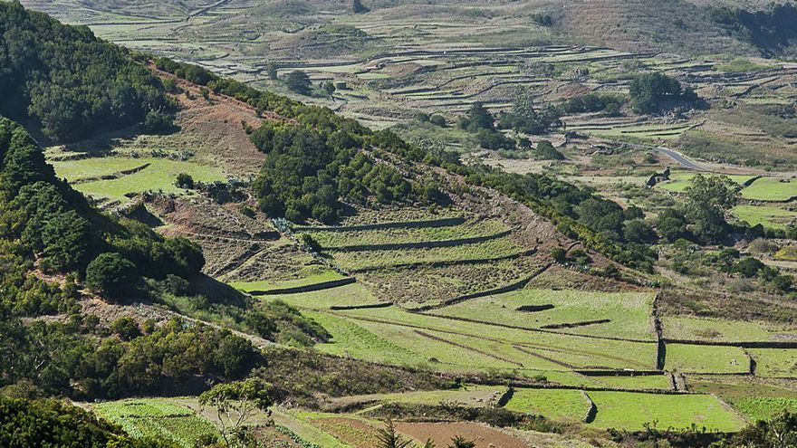 'Proyecto ojeadores' llega a La Palma,  La Gomera, Fuerteventura y Lanzarote
