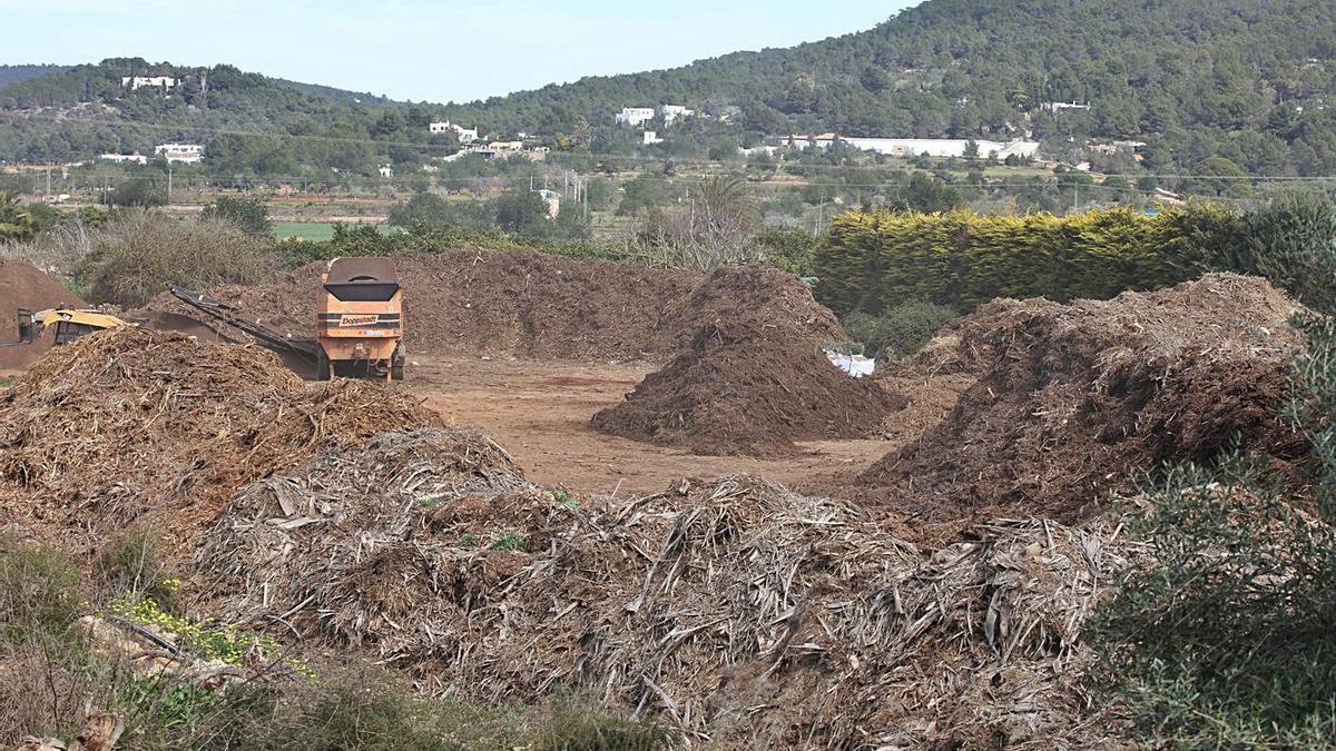 Instalaciones de una empresa de biomasa situada en la carretera de Santa Eulària.