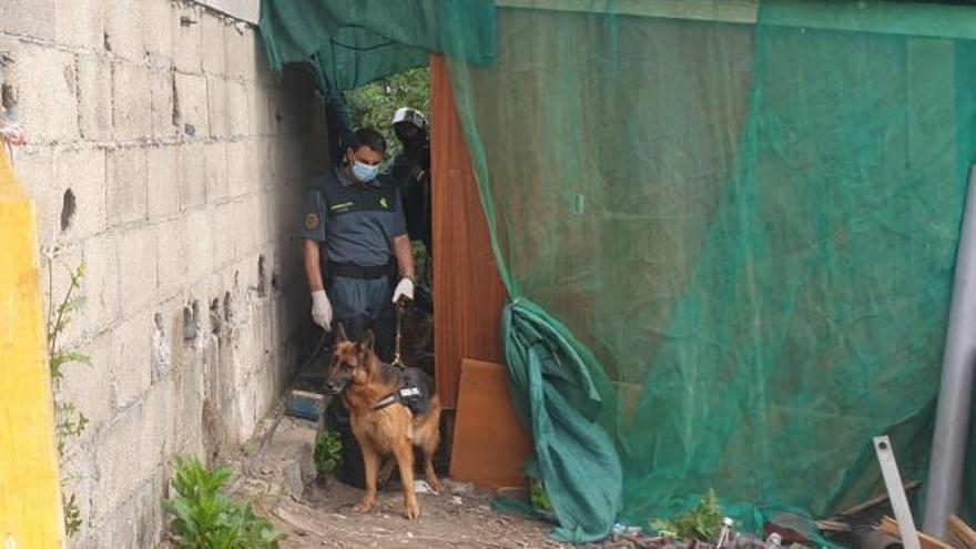 Seis detenidos en una redada antidroga desarrollada por la Guardia Civil en O Vao de Abaixo