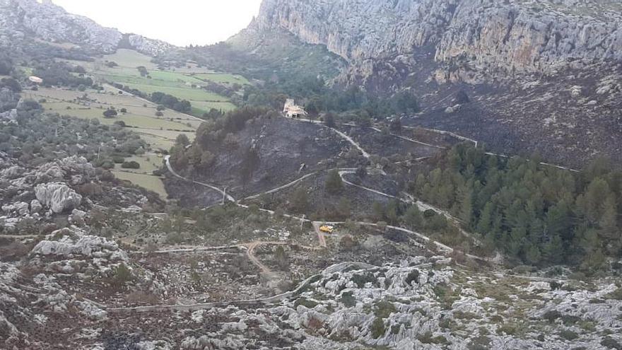 Waldbrand auf der Finca Ariant bei Pollença zerstört 49 Hektar