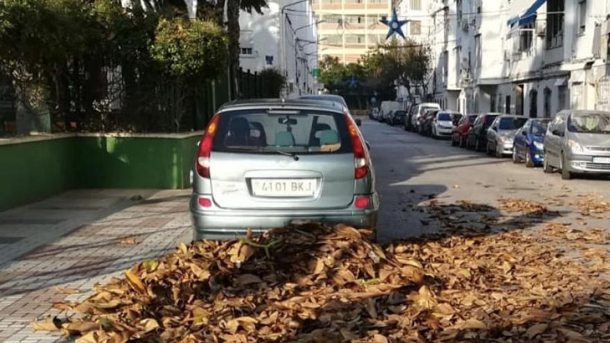 Denuncian que se incumplen funciones en limpieza de parques en Málaga
