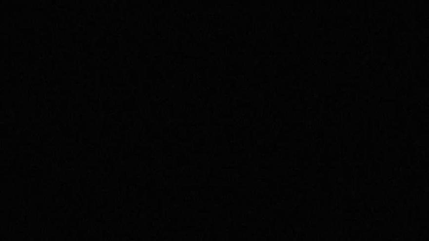 """Daniel Barenboim: """"La educación musical es una cuestión de voluntad política y social, no de dinero"""""""