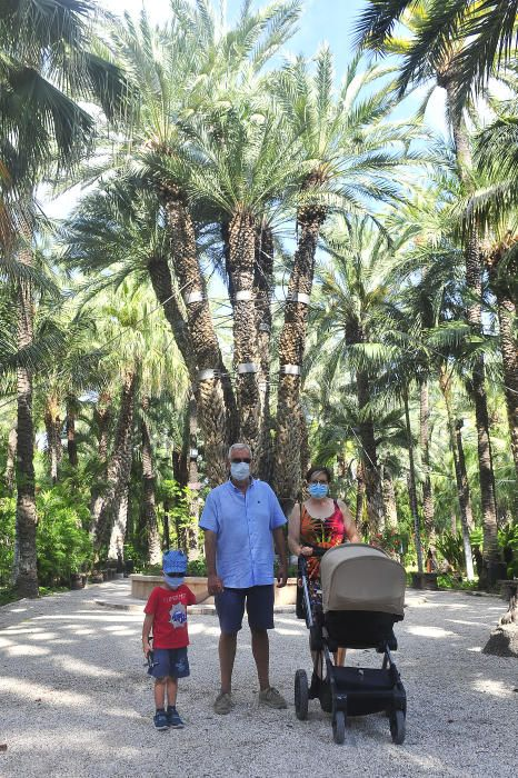 El Jardín Huerto del Cura reabre tras tres meses