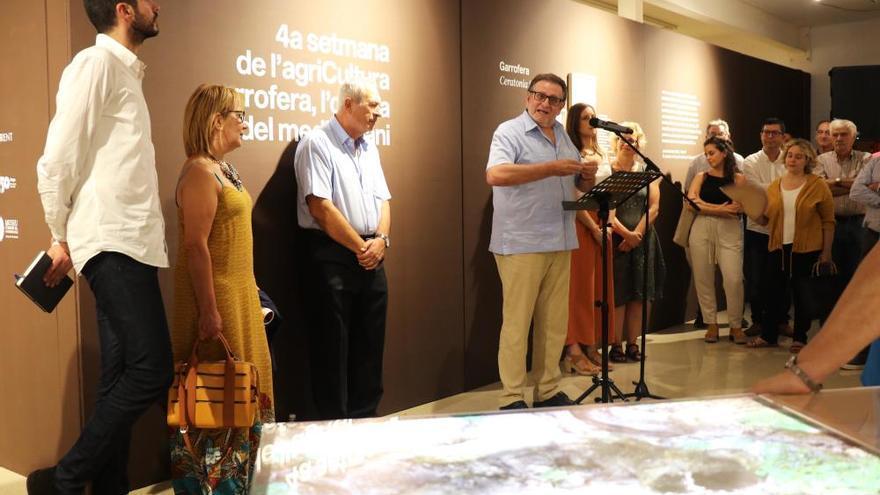 """Torrent inaugura una muestra sobre la """"garrofera"""" en el Museu Comarcal"""