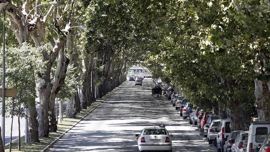 El Ayuntamiento de Málaga busca inversores privados que compartan el gasto de soterrar el litoral